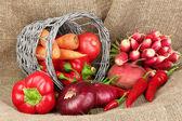 麻布背景上新鲜红色蔬菜 — 图库照片