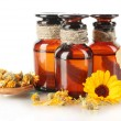 Medicine bottles and calendula, isolated on white — Stock Photo #14313983