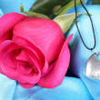 Beautiful pink rose with heart pendant — Stock Photo #14317381