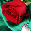 Beautiful red rose with heart pendant — Stock fotografie