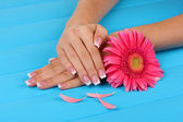 Woman hands with french manicure and flower on blue wooden background — Stock Photo