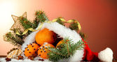 Christmas composition with oranges and fir tree in Santa Claus hat — Foto de Stock