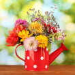 Red watering cwith white polka-dot with flowers on green background — Stock Photo #14333411
