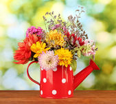 Red watering can with white polka-dot with flowers on green background — Stock Photo