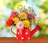 красный лейку с белый горошек с цветами на зеленом фоне — Стоковое фото