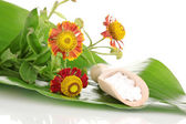 Homeopathic tablets and flower on green leaf isolated on white — Stock Photo