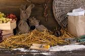 Mousetrap con un pezzo di formaggio nel fienile su fondo in legno — Foto Stock