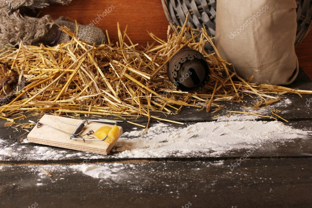 Mousetrap with a piece of cheese in barn on wooden background  Stock Photo #14333683