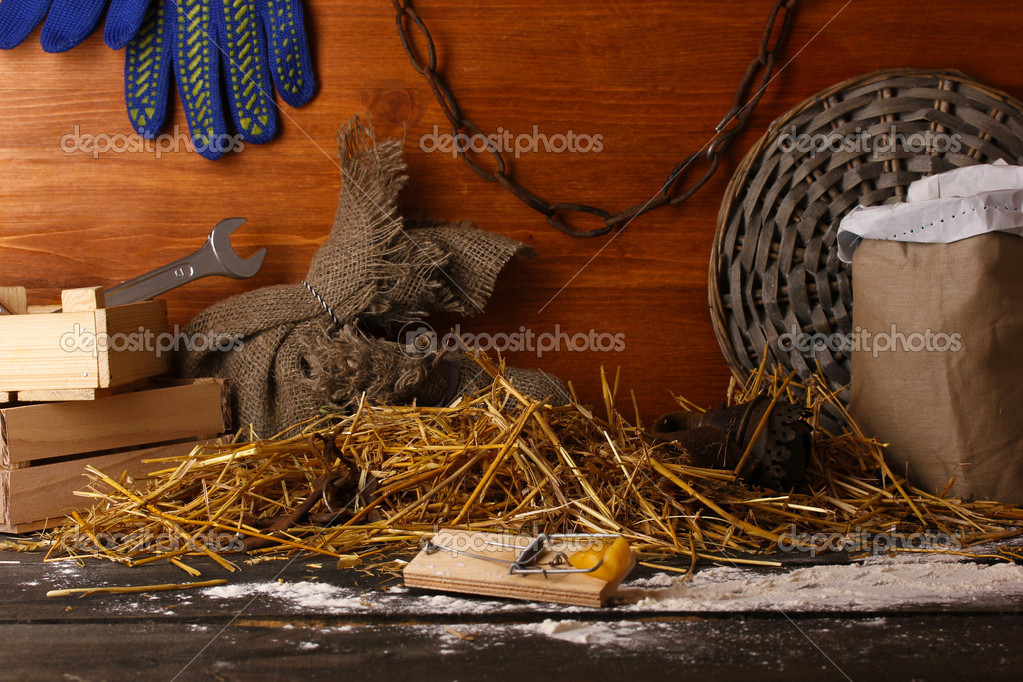 Mousetrap with a piece of cheese in barn on wooden background — Stock Photo #14333699