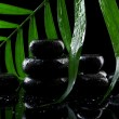 Spa stones with drops and green palm leaf on black background — Stock Photo #14340919