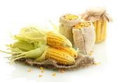 čerstvé kukuřice a tašky s suché obilí, izolované na bílém — Stock fotografie