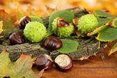 Kastanjer med hösten torkade blad och bark, på trä bakgrund — Stockfoto