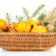 Christmas composition in basket with oranges and fir tree, isolated on white — Stock fotografie