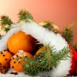 Christmas composition with oranges and fir tree in Santa Claus hat - 