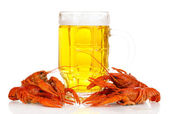 Tasty boiled crayfishes and beer isolated on white — Stock Photo