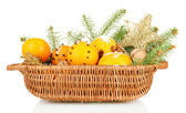 Christmas composition in basket with oranges and fir tree, isolated on white — Stock Photo