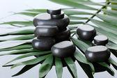 Spa stones on green palm leaf on grey background — Stockfoto