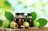 Medicine bottles with chestnuts and leaves, on green background — Stock Photo