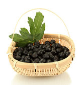 Chokeberry with green leaves in wicker basket isolated on white — Stock Photo