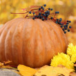 Pumpkin and autumn leaves, on yellow background — Stock Photo #14575877