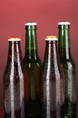 Barevné skleněné lahve piva na červeném pozadí — Stock fotografie