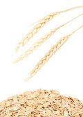 Copos de avena y trigo oídos aislados en blanco — Foto de Stock