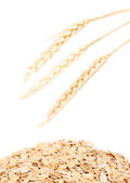 Ovesné vločky a uši pšenice izolované na bílém — Stock fotografie