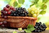 Variedad de uva madura dulce en canasta, sobre fondo verde — Foto de Stock