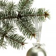Christmas ball on fir tree, isolated on white - Stockfoto