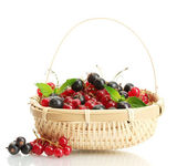 Ripe berries with mint in basket isolated on white — Stock Photo