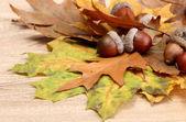 关于秋天的叶子,木制背景上棕色橡子 — 图库照片
