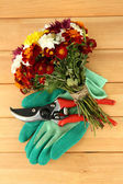 Secateurs with flowers on wooden background — Stock Photo