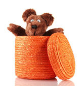 白で隔離される枝編み細工品カラー ボックス — ストック写真