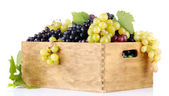 Assortment of ripe sweet grapes in wooden crate, isolated on white — Stock Photo