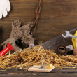 Mousetrap with a piece of cheese in barn on wooden background — Stock Photo