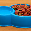 Dry dog food and water in blue bowl on the floor - Stock fotografie