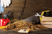 Mousetrap with a piece of cheese in barn on wooden background — Foto Stock