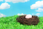 Colorful easter egg on grass — Stock Photo
