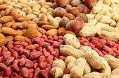 Assortment of tasty nuts, close up — Stockfoto