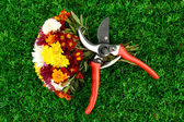 Secateurs with flowers on green grass background — Stock Photo