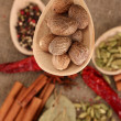 Nutmeg and other spices on sackcloth background — Stock Photo #14852603
