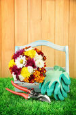 Secateurs with flowers in box on fence background — Stock Photo