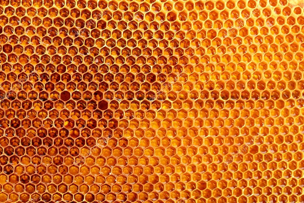 Yellow beautiful honeycomb with honey, background  Stock Photo #14858337