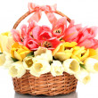 Beautiful tulips in basket isolated on white — Stock Photo #14944397