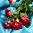 Stock Photo: Beautiful vinous roses on blue satin close-up
