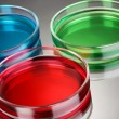 Stock Photo: Color liquid in petri dishes on grey background