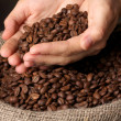 Coffee beans in hands on dark background — Stock Photo #14946853