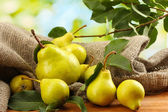 Juicy flavorful pears of nature background — Stock Photo