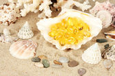 Rybí olej v shellu na písku. představu o dary moře — Stock fotografie