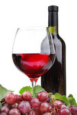 Bottle and glass of wine and grapes, isolated on white — Stock Photo